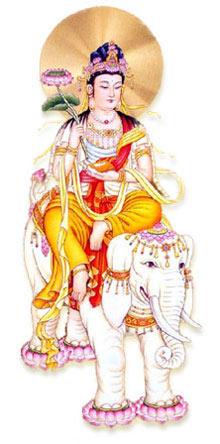 属狗的守护神是什么_属蛇的本命佛_属蛇人的守护神是什么_普贤菩萨_祥安阁风水网
